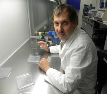 Dr. Taras Pasternak
